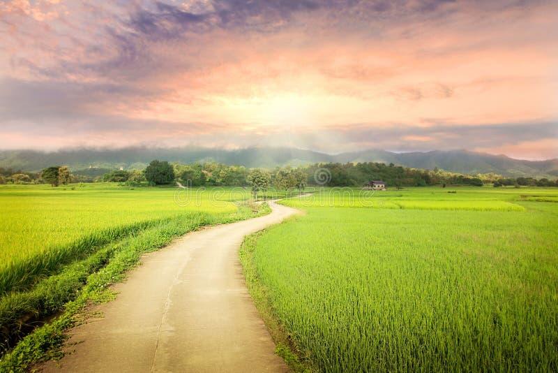 Alba naturale di tramonto sopra il campo o il prato Cielo drammatico luminoso e terra scura Paesaggio della campagna sotto il cie fotografia stock