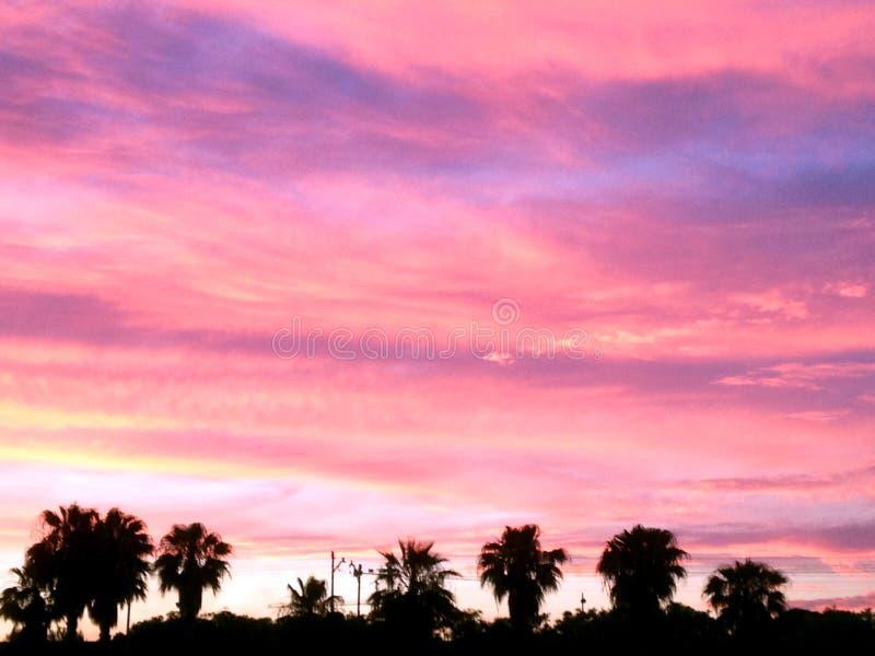 Alba naturale di tramonto sopra il campo o il prato luminoso fotografia stock libera da diritti