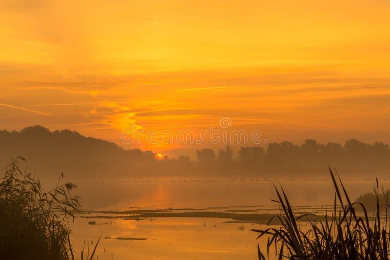 Alba nebbiosa al fiume fotografia stock