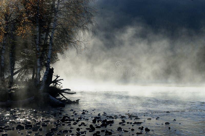 Alba nebbiosa di mattina immagine stock libera da diritti