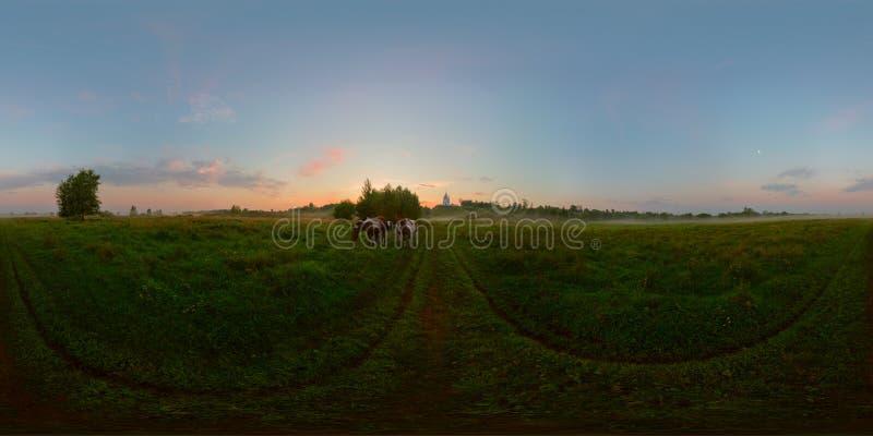Alba nebbiosa su panorama sferico del prato fotografia stock libera da diritti