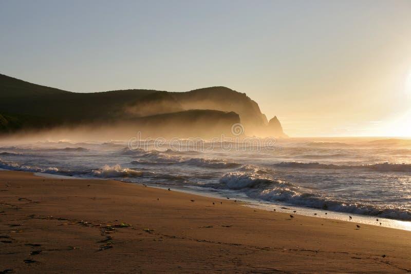 Alba nebbiosa sulla spiaggia del mare di Giappone immagini stock
