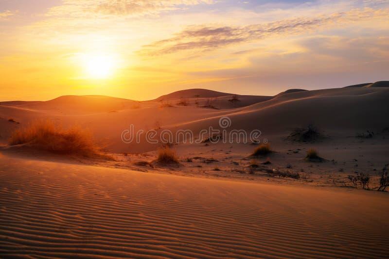 Alba nel deserto della duna fotografia stock libera da diritti