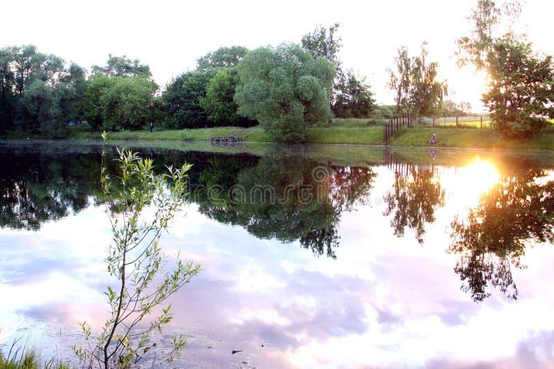 Alba nel lago immagine stock libera da diritti