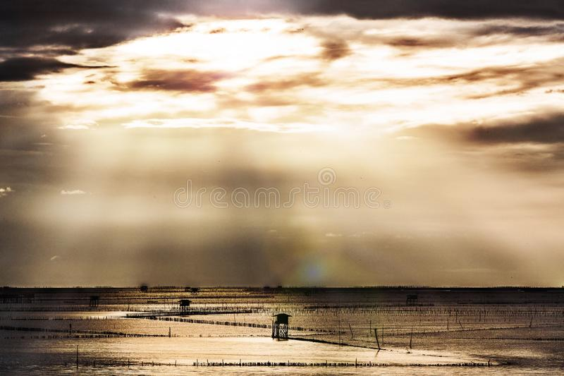 Alba nell'oceano fotografie stock libere da diritti