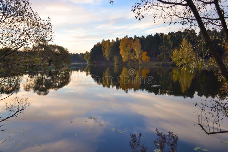 Alba nella foresta vicino al lago La foresta è riflessa nell'acqua Primo mattino di autunno La Russia fotografia stock