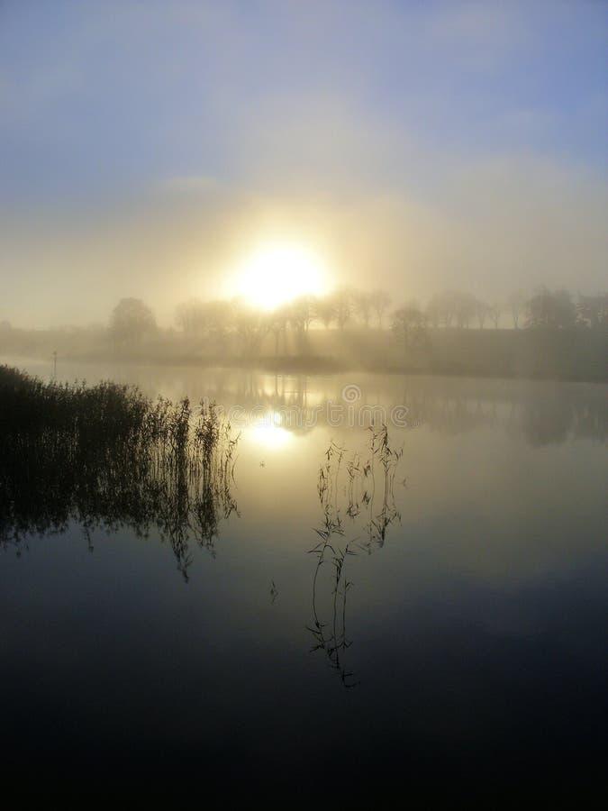 Alba nella mattina nebbiosa sul fiume di Shannon Town fotografia stock libera da diritti