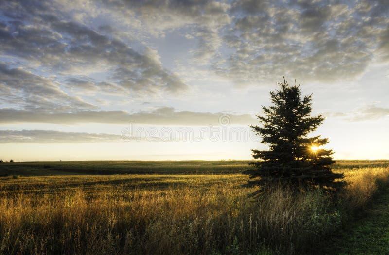 Alba nello Iowa fotografia stock libera da diritti