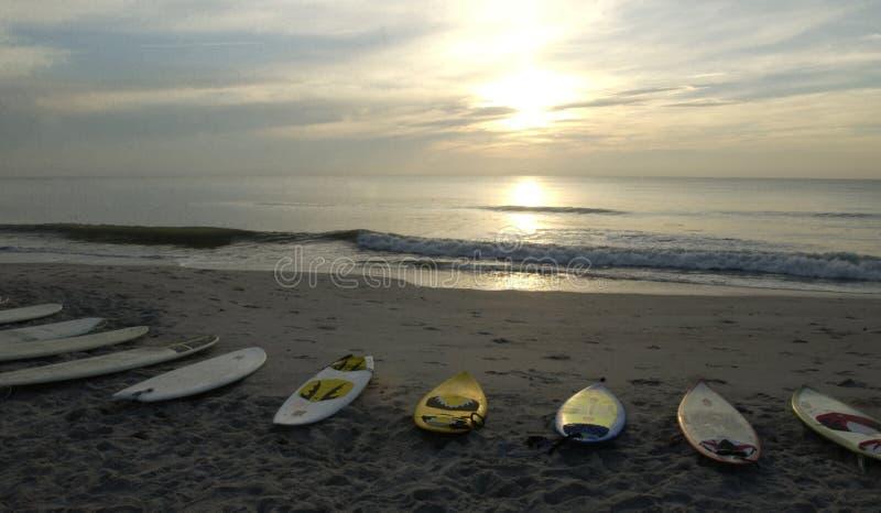 Alba praticante il surfing fotografia stock libera da diritti