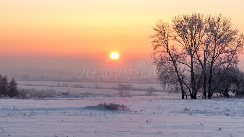 Alba rosa sopra la pianura di inverno fotografie stock