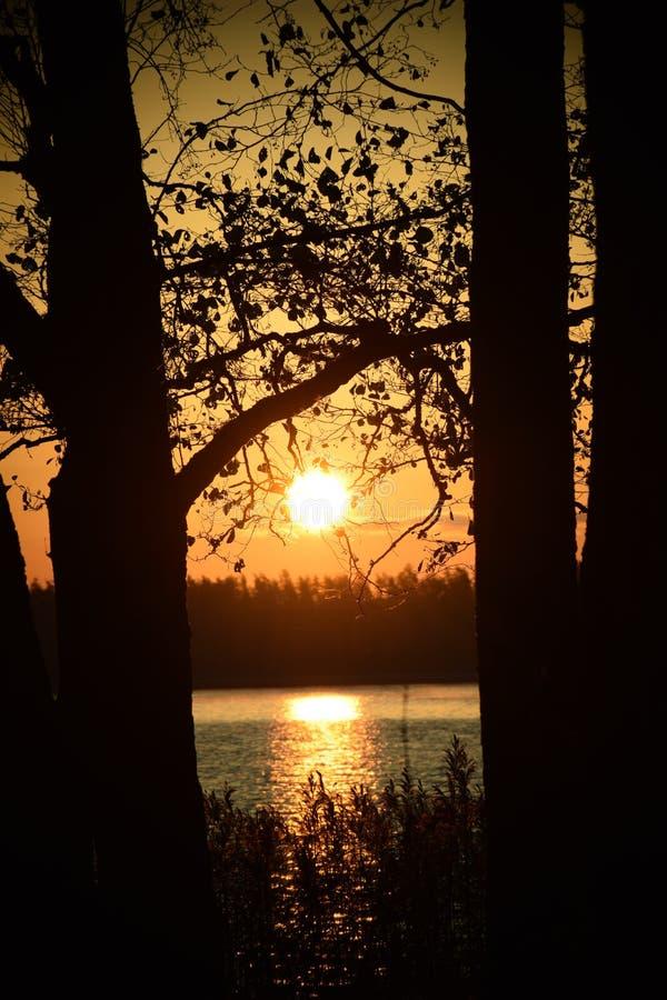 Alba sopra il lago fotografie stock