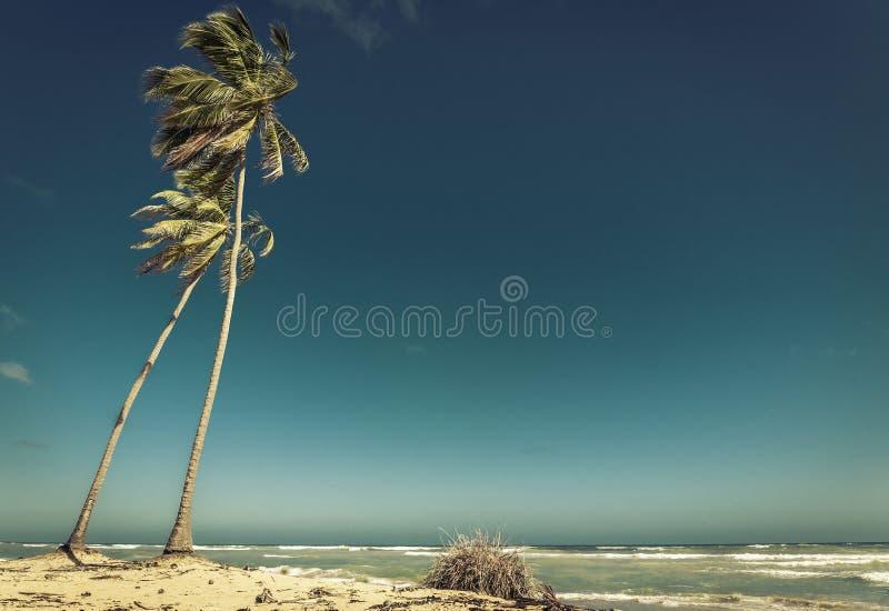 Alba sopra il mare caraibico immagini stock
