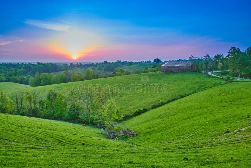 Alba sopra l'azienda agricola del Kentucky immagine stock libera da diritti