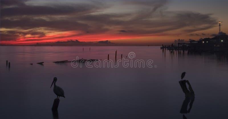 Download Alba Sopra La Baia Di Galveston Fotografia Stock - Immagine di distensione, presto: 212984