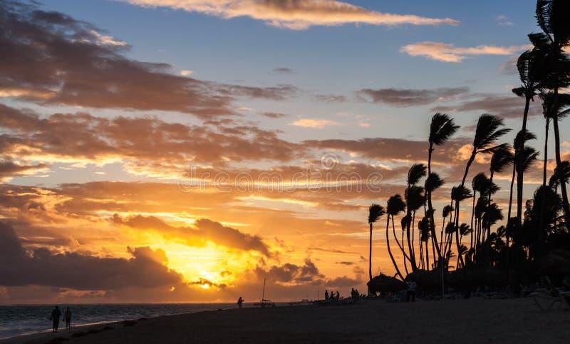 Alba sopra la costa dell'Oceano Atlantico con le siluette delle palme immagini stock