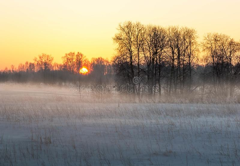 Alba sopra la pianura di inverno immagine stock libera da diritti