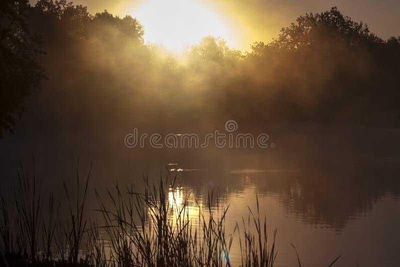 alba sul lago fotografia stock libera da diritti