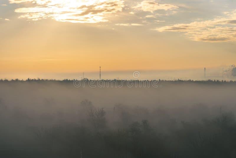 Alba sulle periferie della città Alberi nella nebbia fotografie stock libere da diritti