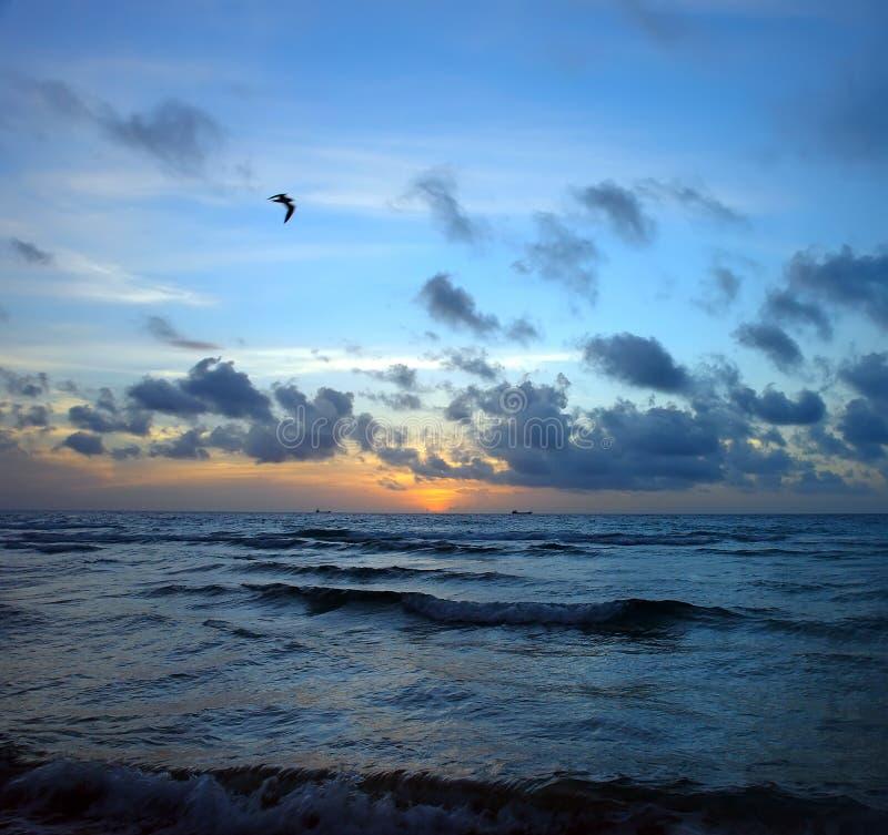 Alba tempestosa, litorale dell'Oceano Atlantico immagini stock