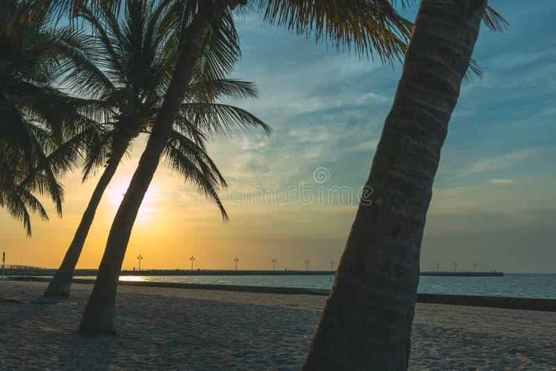 Alba/tramonto della spiaggia dell'isola fotografie stock