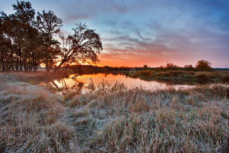 Alba variopinta di autunno Legno vicino al fiume fotografia stock