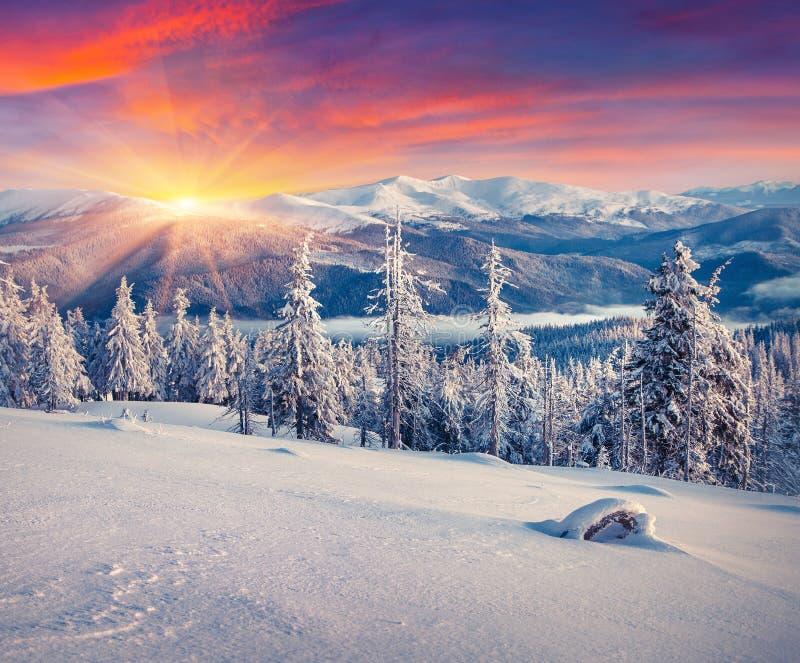 Alba variopinta di inverno nelle montagne fotografie stock