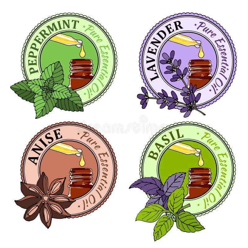 Albahaca, menta, lavanda, anís Sistema de etiquetas del aceite esencial stock de ilustración