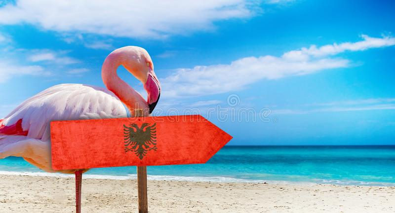 Albania flag on wooden table sign on beach background with pink flamingo. There is beach and clear water of sea and blue sky in. The background. It is tropical royalty free stock photography