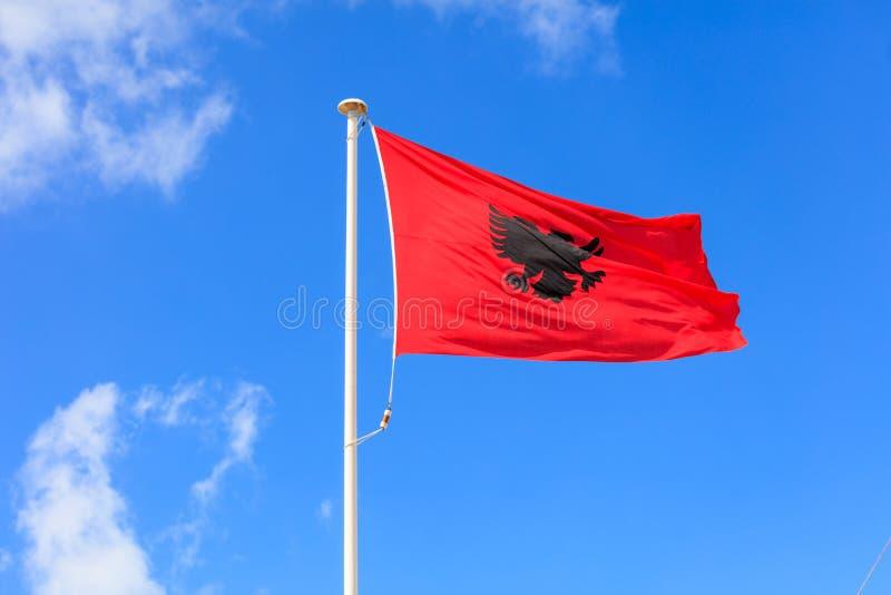 Albania flaga Albańczyk flaga na słupa falowaniu na niebieskiego nieba tle zdjęcie royalty free