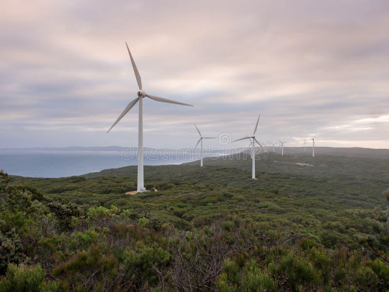 Albanien-Windpark, West-Australien stockfotos