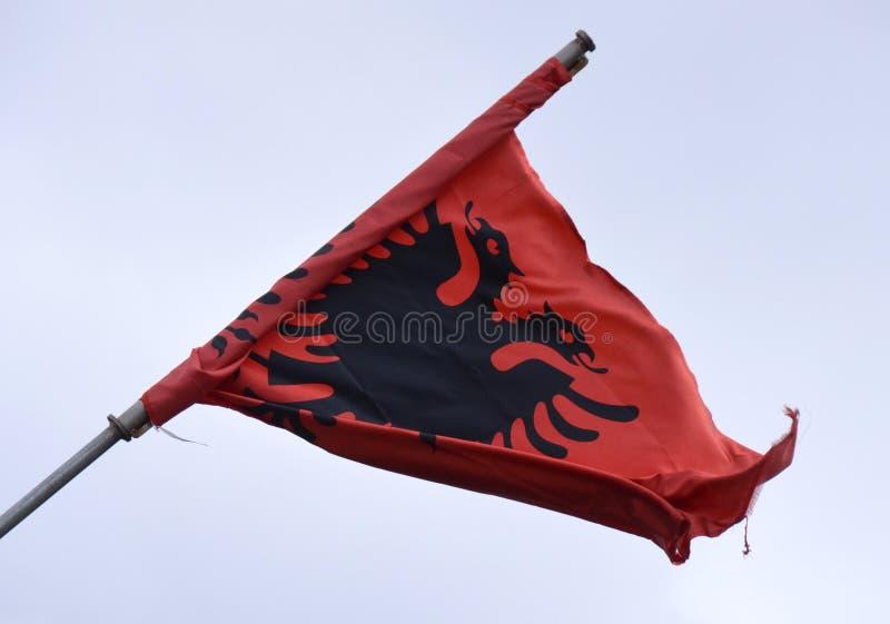 Albanische Markierungsfahne lizenzfreies stockfoto