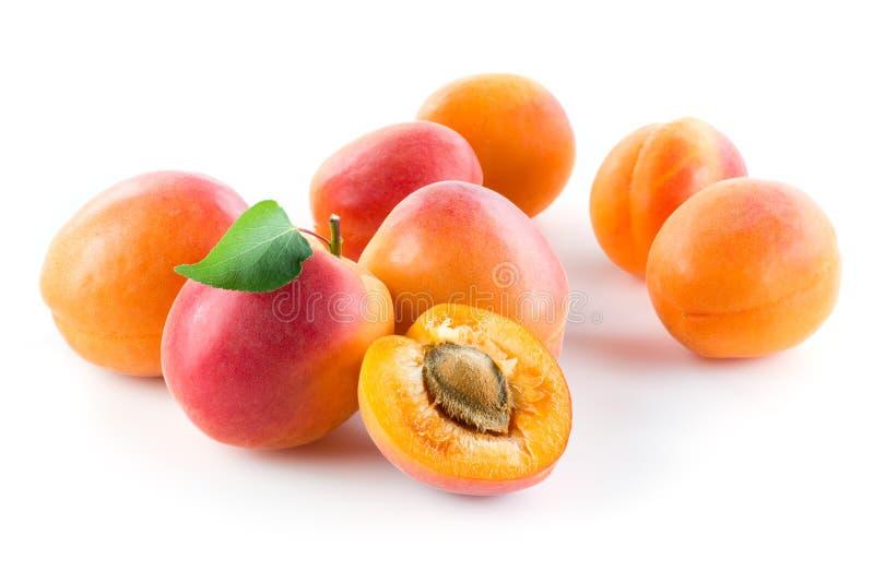 albaricoque Grupo de fruta aislado en el fondo blanco fotos de archivo libres de regalías