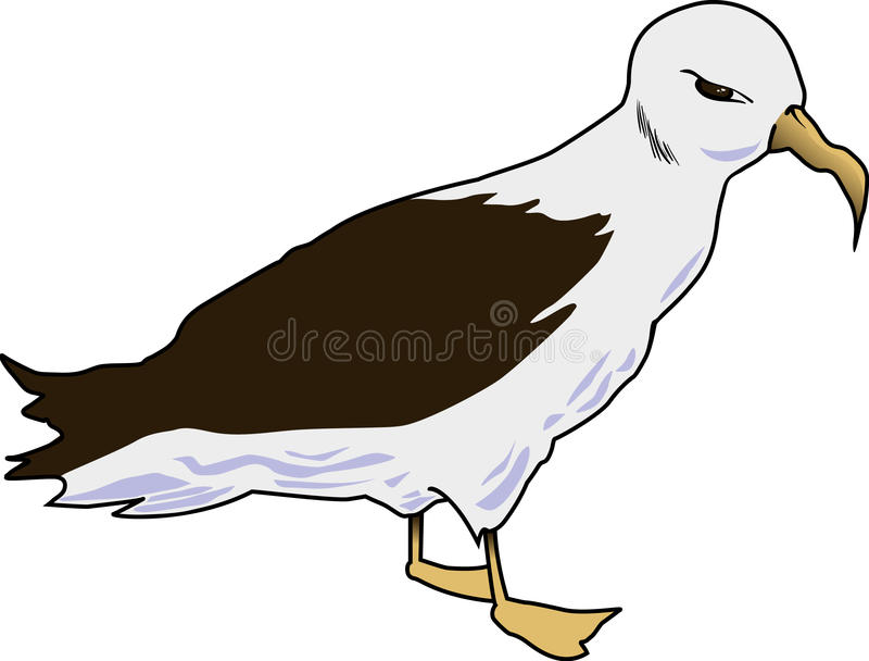Albatross 001. Simple illustration of an albatross royalty free illustration