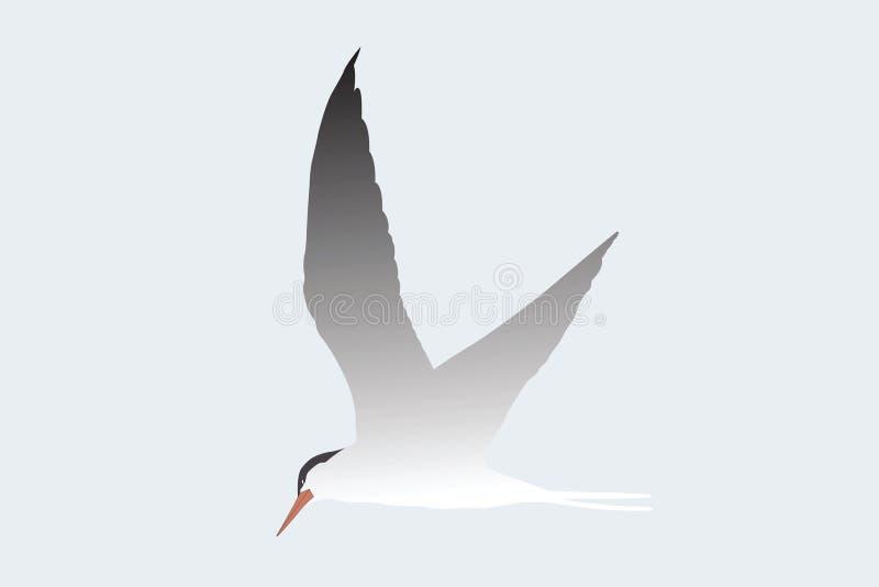 Albatross. Vector illustration of albatross flying under the sky royalty free illustration
