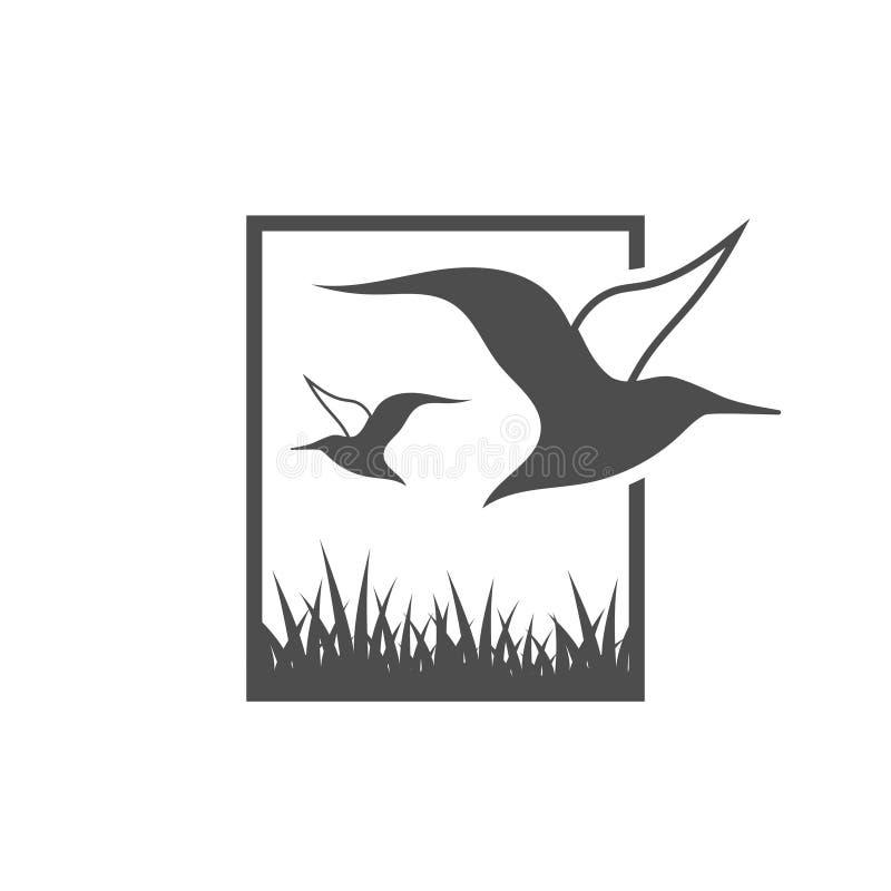 Albatross graphic design template vector. Albatross graphic design template royalty free illustration