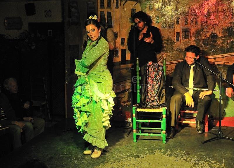 albayzin flamenco zdjęcie stock