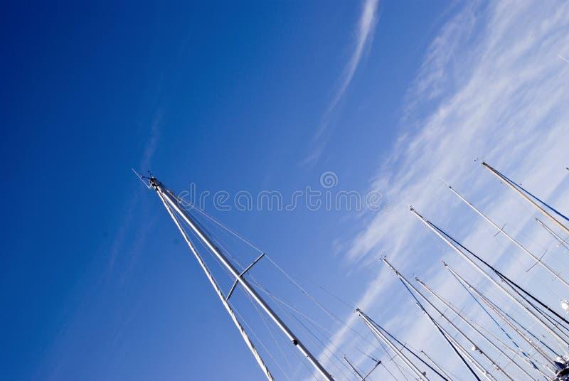 Download Alberi immagine stock. Immagine di calma, porto, gherlino - 7310299