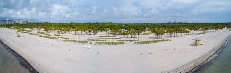 Alberi aerei del talm di Key Biscayne Miami Florida del parco di Crandon di immagine fotografie stock libere da diritti