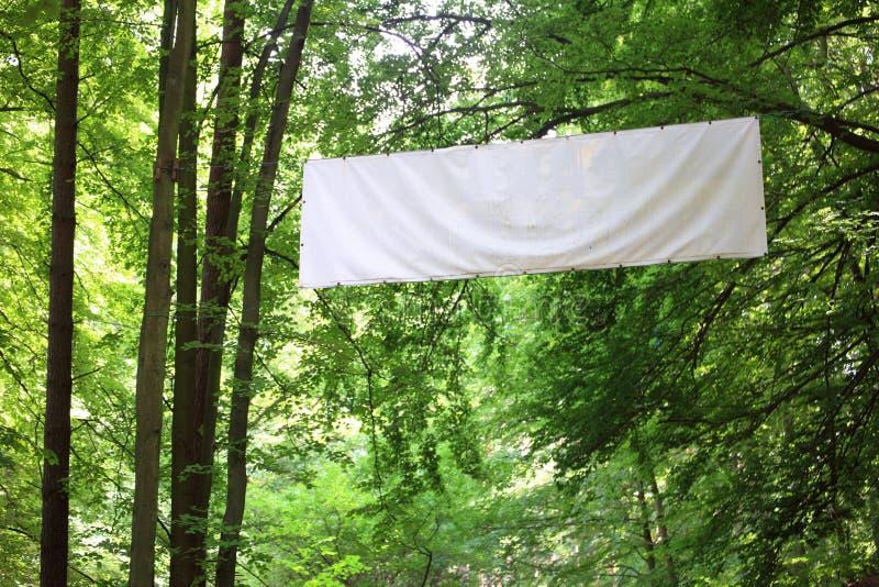 Alberi in bianco di verde della bandiera della scheda bianca fotografie stock libere da diritti