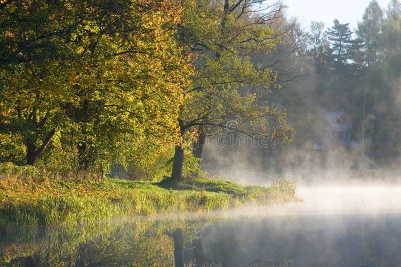 Alberi d'autunno sopra acqua calma fotografie stock libere da diritti