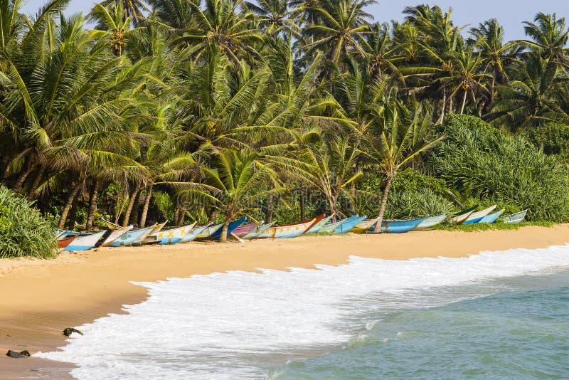 Alberi del cocco e barche di legno sulla spiaggia di sabbia fotografie stock libere da diritti