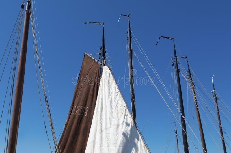 Alberi della barca a vela immagine stock libera da diritti