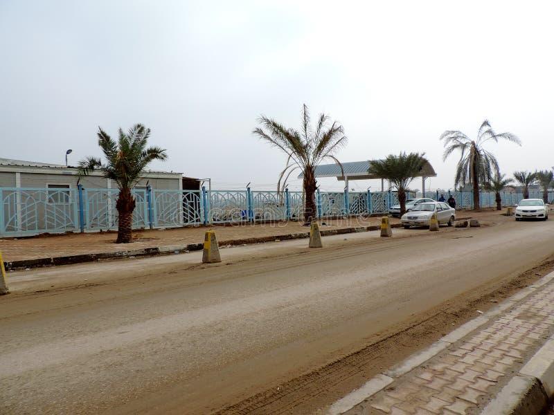 Alberi della data piantati sulle vie di Najaf fotografie stock