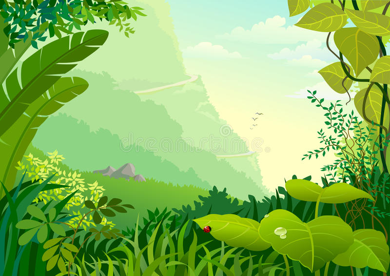 Alberi della giungla del Amazon e vegetazione densa illustrazione di stock