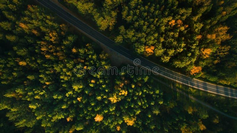 Alberi della strada e di autunno della montagna sopra la natura gialla, rossa e verde della foresta, alta vista superiore Tiro ae immagine stock libera da diritti