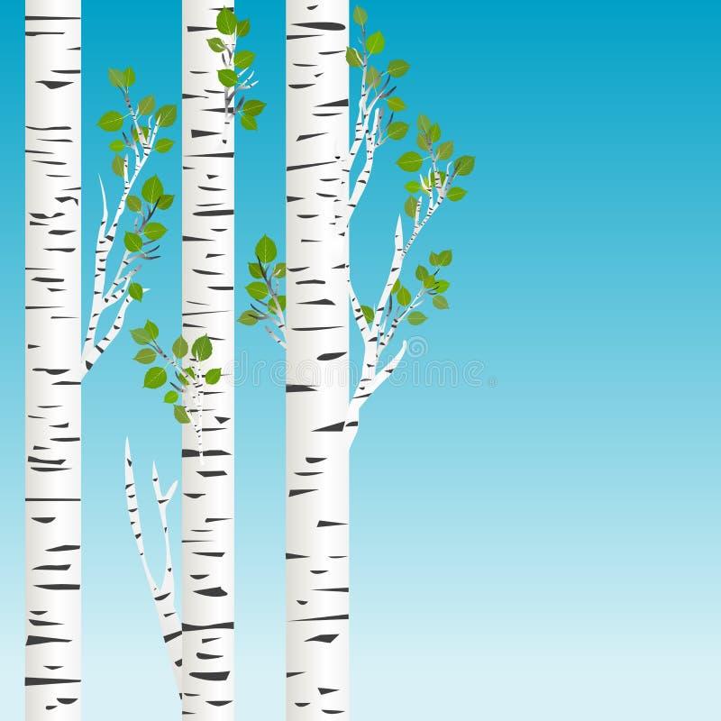 Alberi di betulla con il fondo delle foglie verdi illustrazione vettoriale