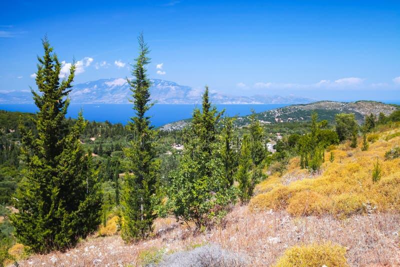Alberi di cipresso selvaggi Paesaggio greco costiero fotografie stock libere da diritti