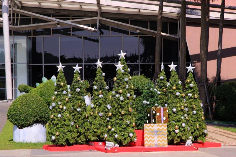 Alberi di Natale con le decorazioni incluse al grande magazzino immagine stock