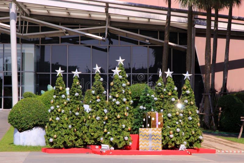 Alberi di Natale con le decorazioni incluse e luce di riflessione al grande magazzino immagine stock libera da diritti