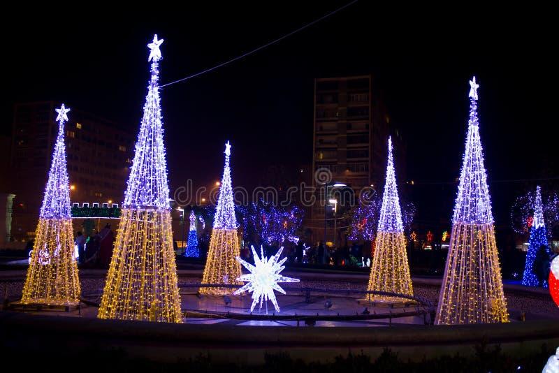Alberi di Natale illuminati fotografia stock